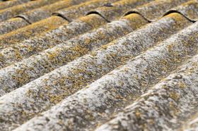 roof-1.jpgのサムネイル画像